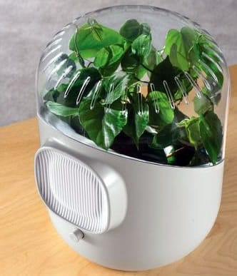Botanical Air Purifier