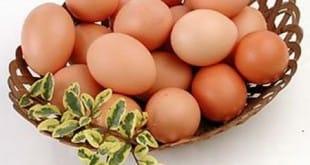 Uno de huevos