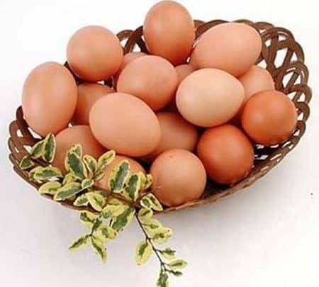 Photo of Uno de huevos