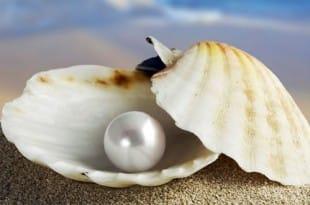 Perlas del COU (2º de BAC)