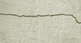 Bacterias para eliminar grietas en el hormigón