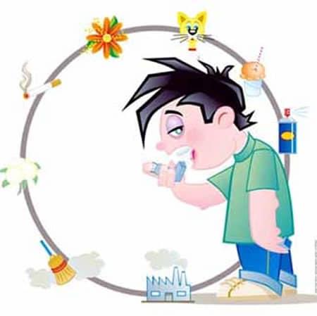 Virus y bacterias contra el asma