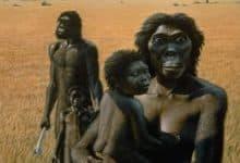 Los hombres primitivos eran sedentarios, las mujeres no