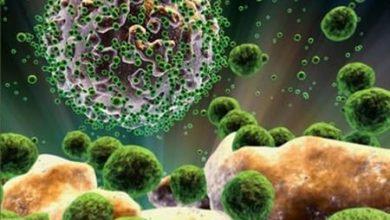 Photo of Importante disminución de infecciones por VIH