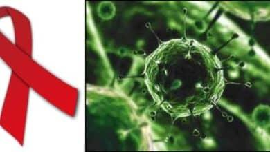 Identificadas proteínas humanas que avivan el VIH