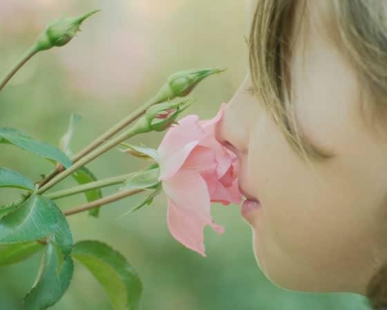 ¿Será verdad que los psicópatas poseen un débil sentido del olfato?