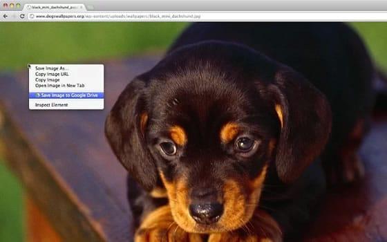 Extensión de Google Chrome para guardar contenido web en Google Drive