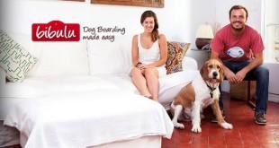 Bibulu, el alojamiento ideal para tu mascota