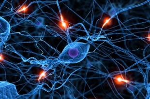 Células que se comunican a distancia, células psíquicas