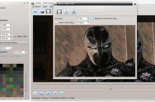 QGifer, para crear GIFs animados desde vídeos