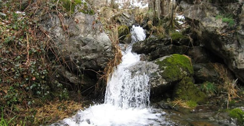 Photo of WebQuest – El agua y la vida