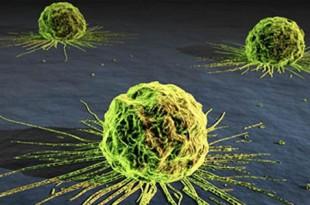 Moléculas para prevenir el cáncer