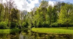 La Naturaleza y el bienestar