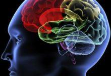 Electrodos que transforman pensamientos en palabras