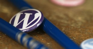 ¿Por qué es WordPress el mejor CMS?