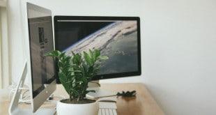 Implementar AMP en WordPress