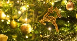 Llega la Navidad, pero también los gastos