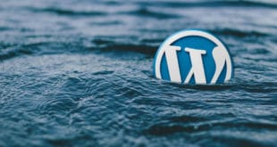 Localizar enlaces rotos en WordPress con WP Broken Link Status Checker