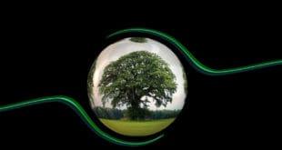 La coacervación y el origen de la vida