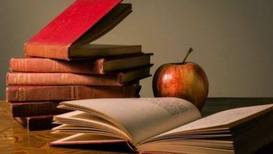 Photo of 8 excelentes artículos sobre formación online