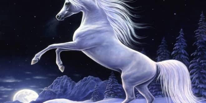 Sobre los unicornios y las empresas o compañías unicornio