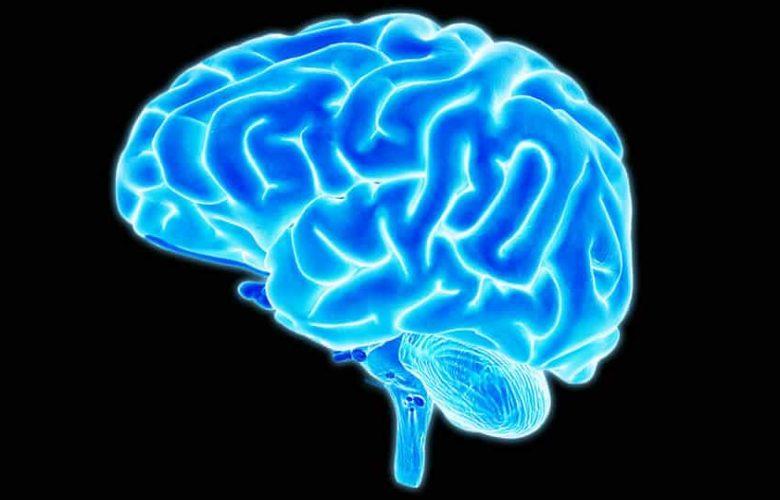 Comunicación directa entre el cerebro y la nube