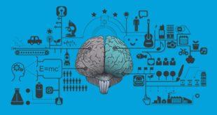 Juegos de memoria y de salud mental en CogniFit