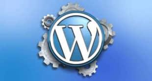 Cómo impedir que copien los artículos que has escrito en WordPress