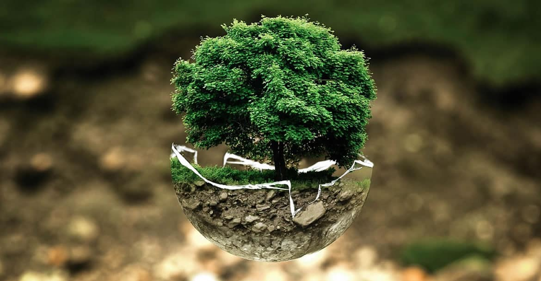 La conservación del medio ambiente