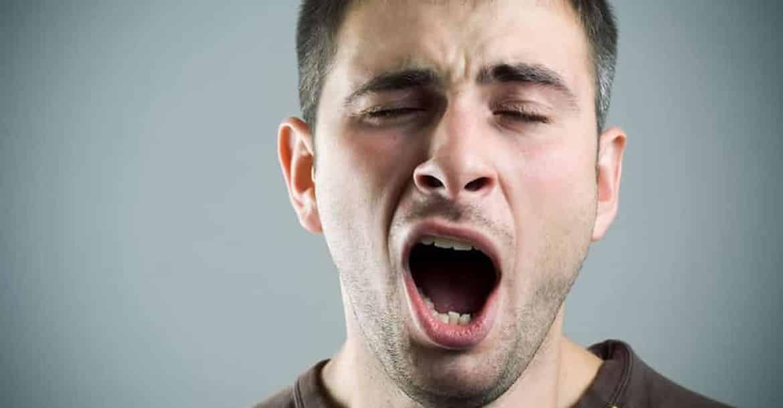 La duración del bostezo está relacionada con el tamaño del cerebro
