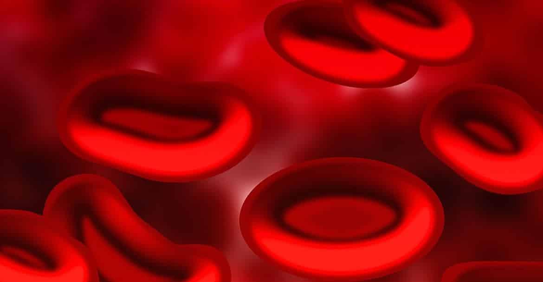 Las personas con grupo sanguíneo 0 tienen pocas posibilidades de superar un accidente grave