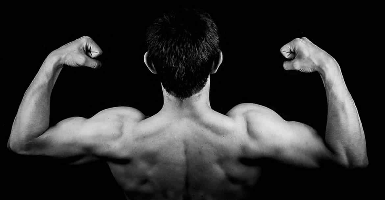 Los músculos artificiales solucionarán muchos problemas musculares