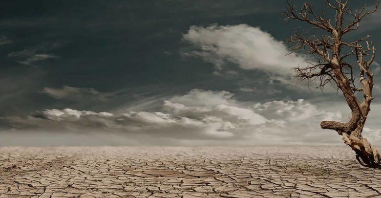 Photo of ¿Cuál es el periodo de vigencia del carbono radioactivo?