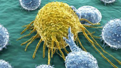 Photo of Nuevo medicamento que actúa contra el cáncer sin afectar a las células sanas