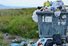 Facebook sabe mucho, los plásticos que no contaminan y la esperanza de vida