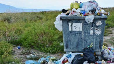 Photo of Facebook sabe mucho, los plásticos que no contaminan y la esperanza de vida
