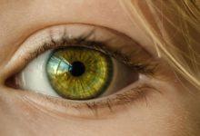 Photo of Personas ciegas podrán ver gracias a un ojo biónico