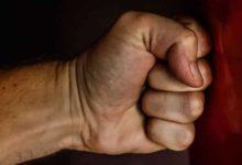 Teorías sobre la agresividad en el hombre