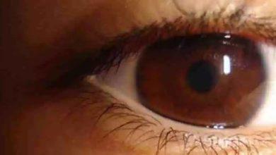 Algunas curiosidades sobre nuestros ojos