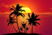 La isla en la que solo responden con Cha o Chi