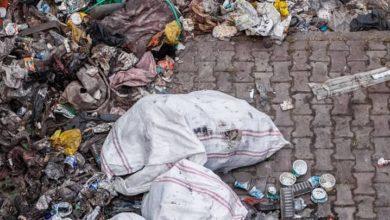Photo of Los plásticos depositados en el mar matan las bacterias que regeneran el oxígeno