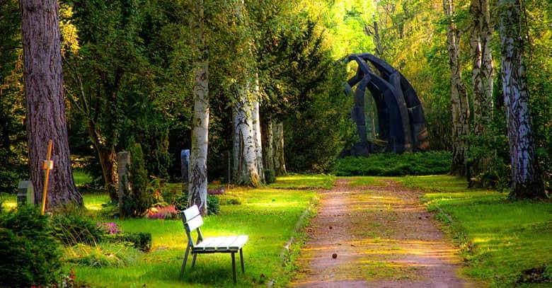 Dos horas a la semana en contacto con la naturaleza son necesarias para disfrutar de buena salud