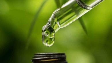 ¿Puede el aceite de CBD de Fórmula Swiss curar el cáncer de piel?