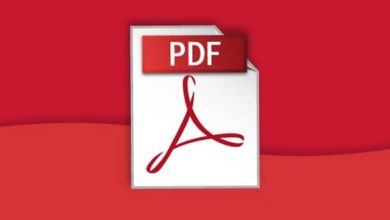 Photo of PDF Bob, un editor online de PDF para todos