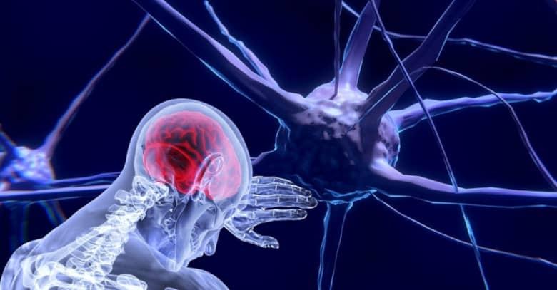 Crear nuevas redes neuronales