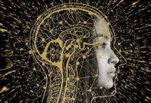Photo of El cerebro guarda los recuerdos en función de como se aprendan