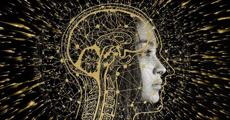 El cerebro guarda los recuerdos en función de como se aprendan