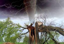 Cómo monitorear los riesgos meteorológicos