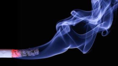Photo of Los pulmones se regeneran al dejar de fumar