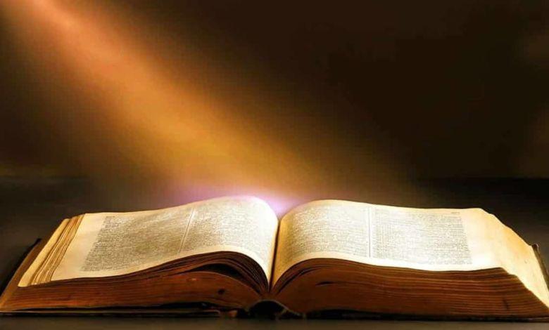 Photo of Los libros que te recomiendan leer